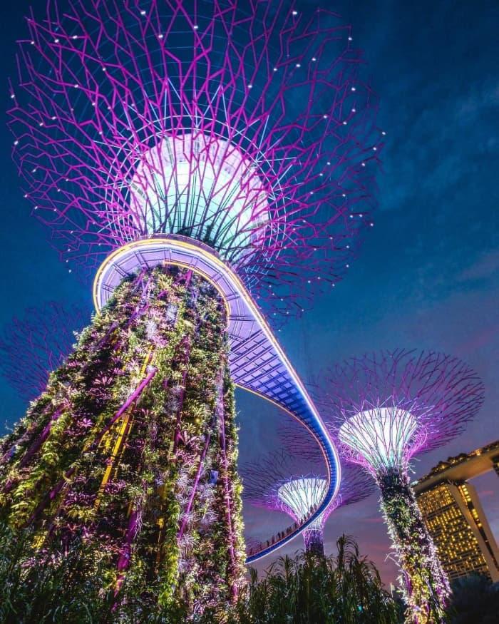 Gardens by the Bay Singapore rực rỡ về đêm
