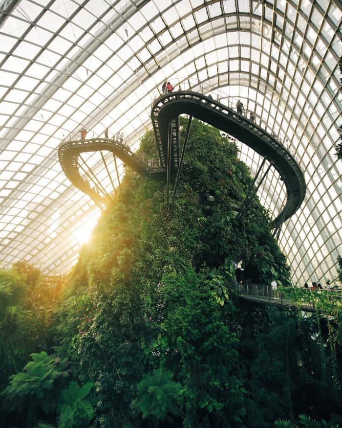 Khu vực Cloud Forest ở Gardens by the Bay Singapore