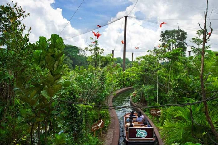 Ngồi thuyền tham quan River Safari ở Singapore