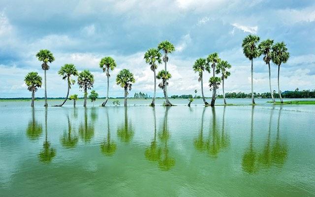 Búng Bình Thiên ở An Giang