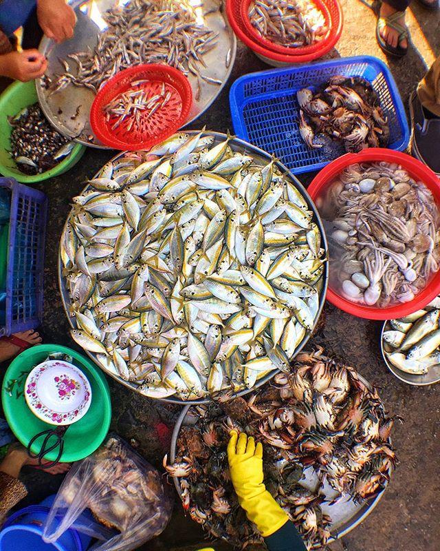 Chợ Gành Dầu ở Phú Quốc