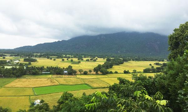 Địa điểm du lịch ở An Giang: Cánh đồng Tà Pạ
