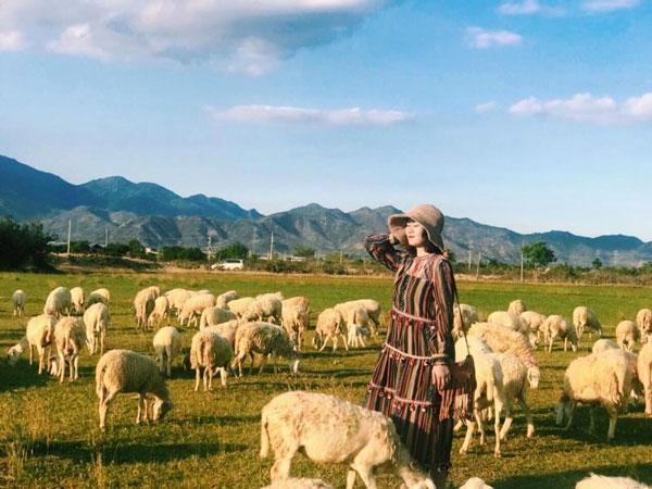 Đồng Cừu An Hòa - Điểm checkin siêu ảo ở Ninh Thuận