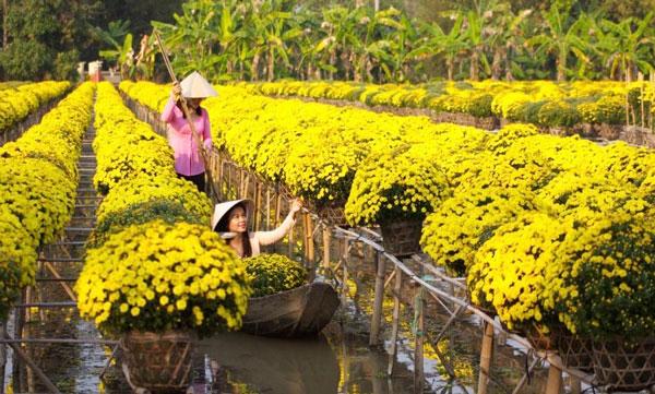 Địa điểm du lịch miền Tây: Làng hoa Sa Đéc