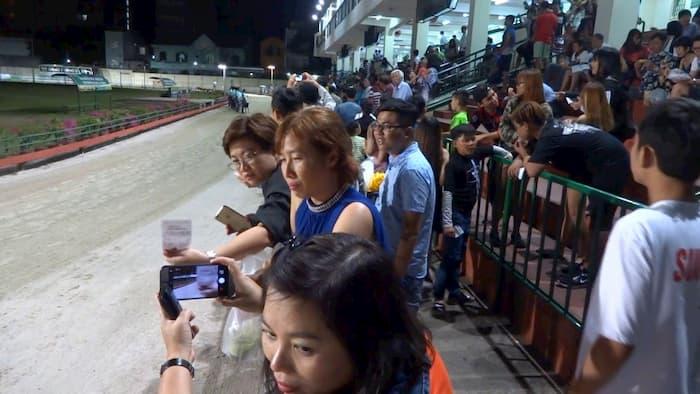 Khán giả xem đua chó và đặt cược