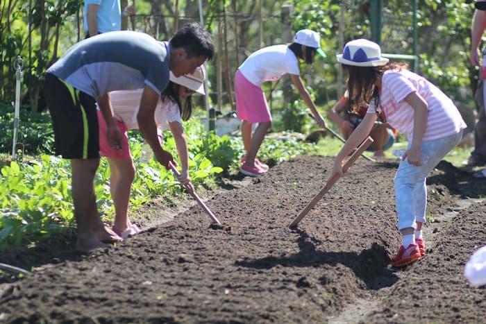 Các em học sinh tham gia tour Fun Farm Hồ Mây
