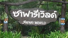 Vé tham quan Safari World ở Bangkok